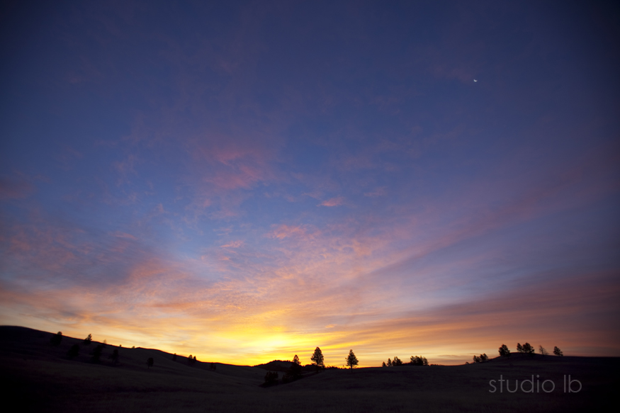 Custer State Park Sunrise_3