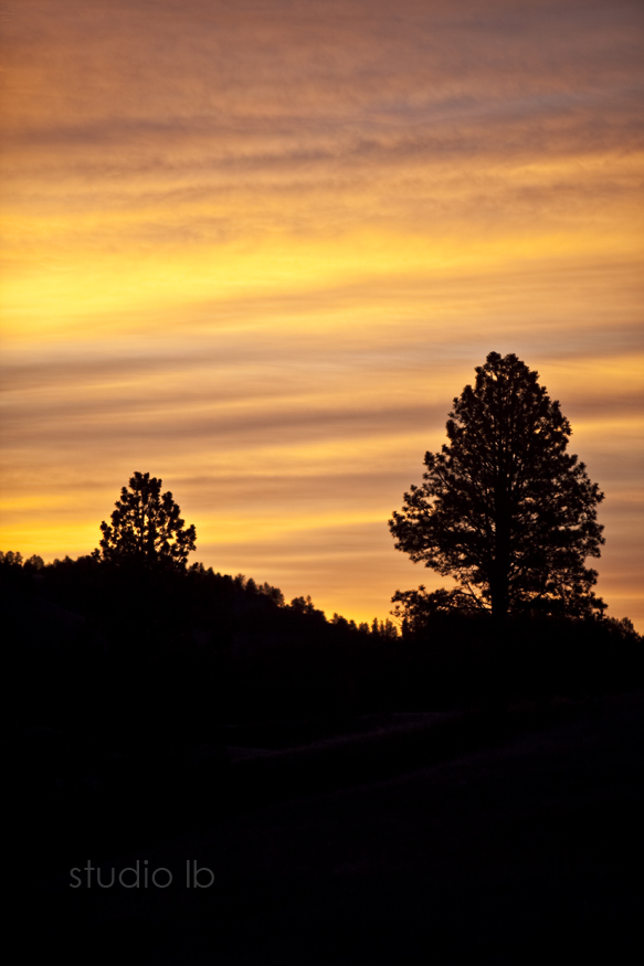 Custer State Park Sunrise_4